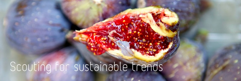Sustainable trends