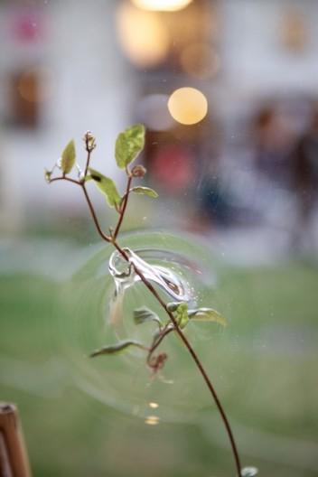 Micro Garden 3